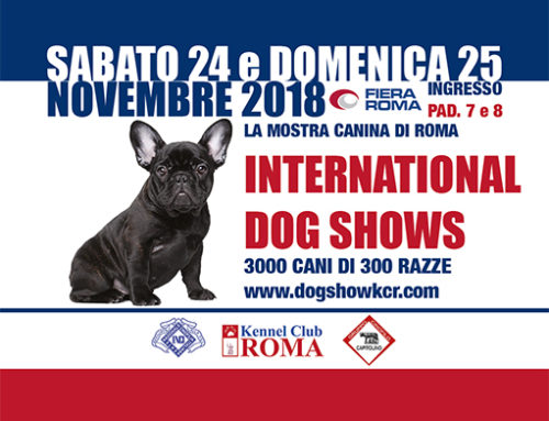 Acquasmart srl @ International Dog Shows 2018